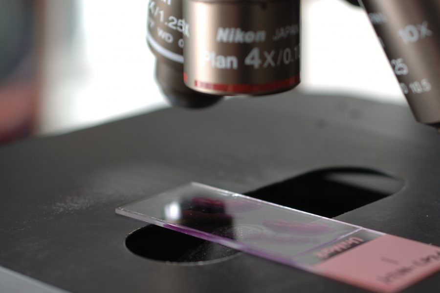 Image of microscope for the microscope link